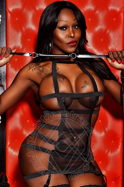 Bdsm Mistress Transex 103